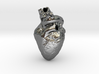 Real Anatomical Heart Hollow 3d printed