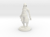 Ninja statue 3d printed