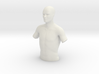 Torso Male 90mm 3d printed