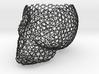 Cranium Anatomica Macramé 3d printed
