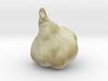 The Garlic 3d printed