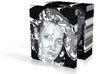 Illusion Box 3in 3d printed