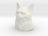 Grumpy Cat Bust 3d printed