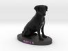 Custom Dog Figurine - Bella 3d printed