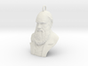 "Charles Darwin 1"" Bust, Pendant, Ear Ring, Charm,  3d printed"