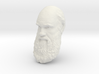 "Charles Darwin 15"" Life Size Decimated wall mount 3d printed"