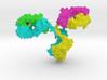 Immunoglobulin Antibody 3d printed