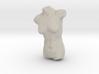 Female Torso Sculpt 3d printed