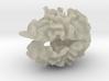 Brain White Matter 3d printed
