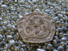 Polished Dragon Coin 3d printed oblique glamour shot - on a bed of shiny pebbles
