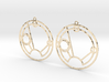 Sienna - Earrings - Series 1 3d printed