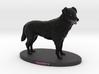 Custom Dog Figurine - Sheffy 3d printed