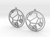 Genisus - Earrings - Series 1 3d printed