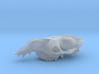 big dromedary skull 3d printed