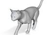 Cat Walking 1/29 scale 3d printed