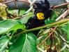Custom Goku SSjj4 Inspired Lego 3d printed